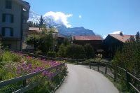 Wanderung Wengen - Wengernalp
