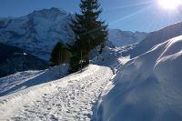 Winterwanderung Grütschalp-Mürren